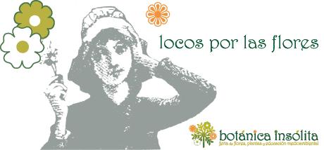 Logo Botanica Insolita